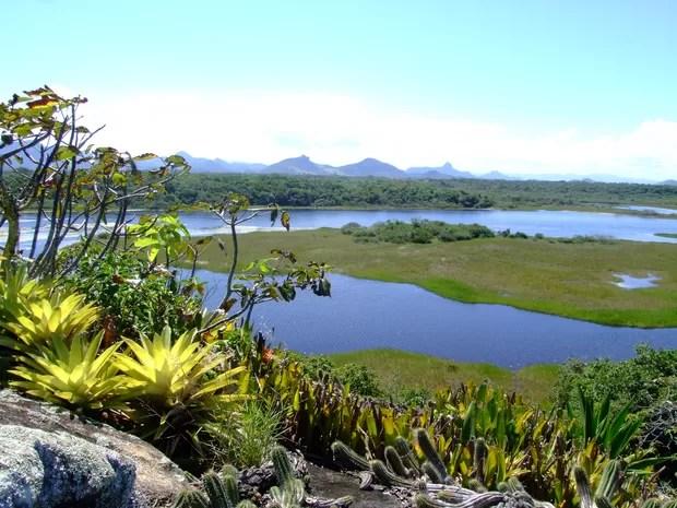 Vista das lagoas do Parque Estadual Paulo César Vinha, em Guarapari (Foto: Divulgação/ Lauro Narciso)