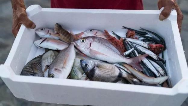 Em breve, os compradores poderão aprender a 'história' dos peixes que vão comer (Foto: GETTY IMAGES/BBC News Brasil)
