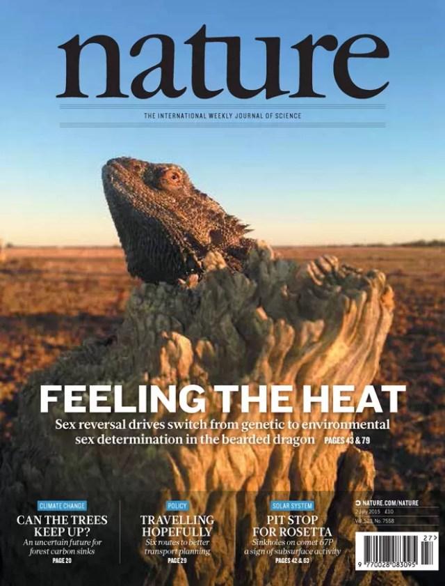 Capa da revista 'Nature' foi sobre pesquisa a respeito do lagarto australiano que muda de sexo (Foto: Nature/Divulgação)