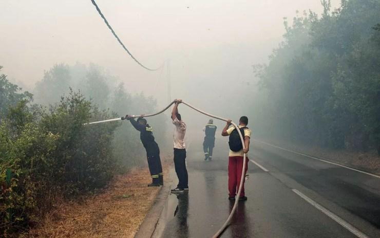 Bombeiros tentam controlar incêndio florestal na península de Lustica (Foto: Stevo Vasiljevic / Reuters)