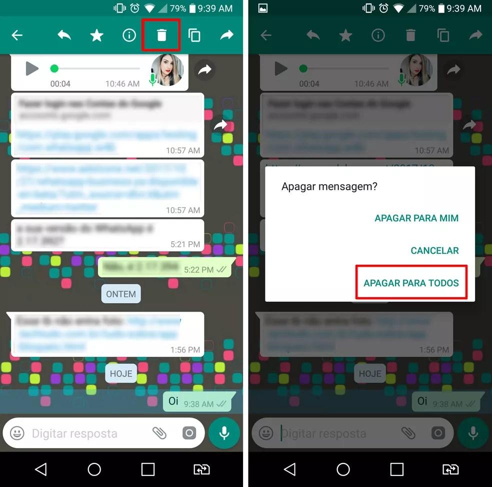 Caminho para apagar mensagens enviadas no WhatsApp  (Foto: Reprodução/Aline Batista)