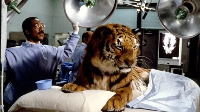 Globo exibe o filme Dr. Dolittle na Sessão da Tarde