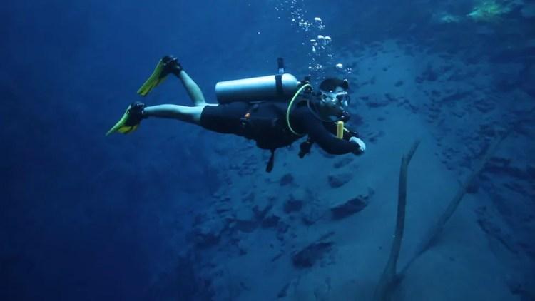 Mergulhador procurando manchas de óleo do fundo do mar de Tamandaré, no dia 24 de outubro de 2019 — Foto: Reprodução/TV Globo