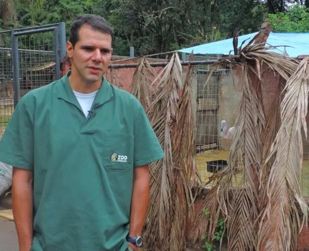 Veterinário André Costa diz que recuperação da ave é uma vitória (Foto: Tássia Lima / G1)