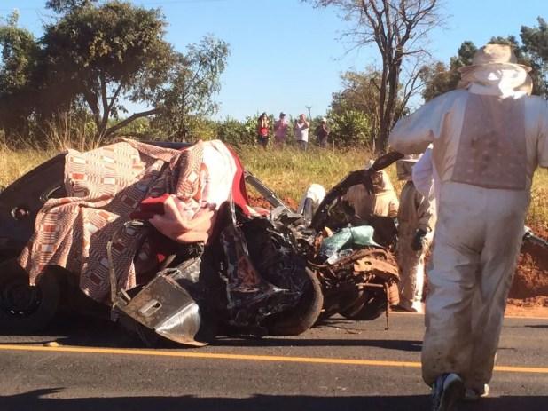 Acidente com caminhão carregado com abelhas (Foto: Graciela Andrade/TV TEM)