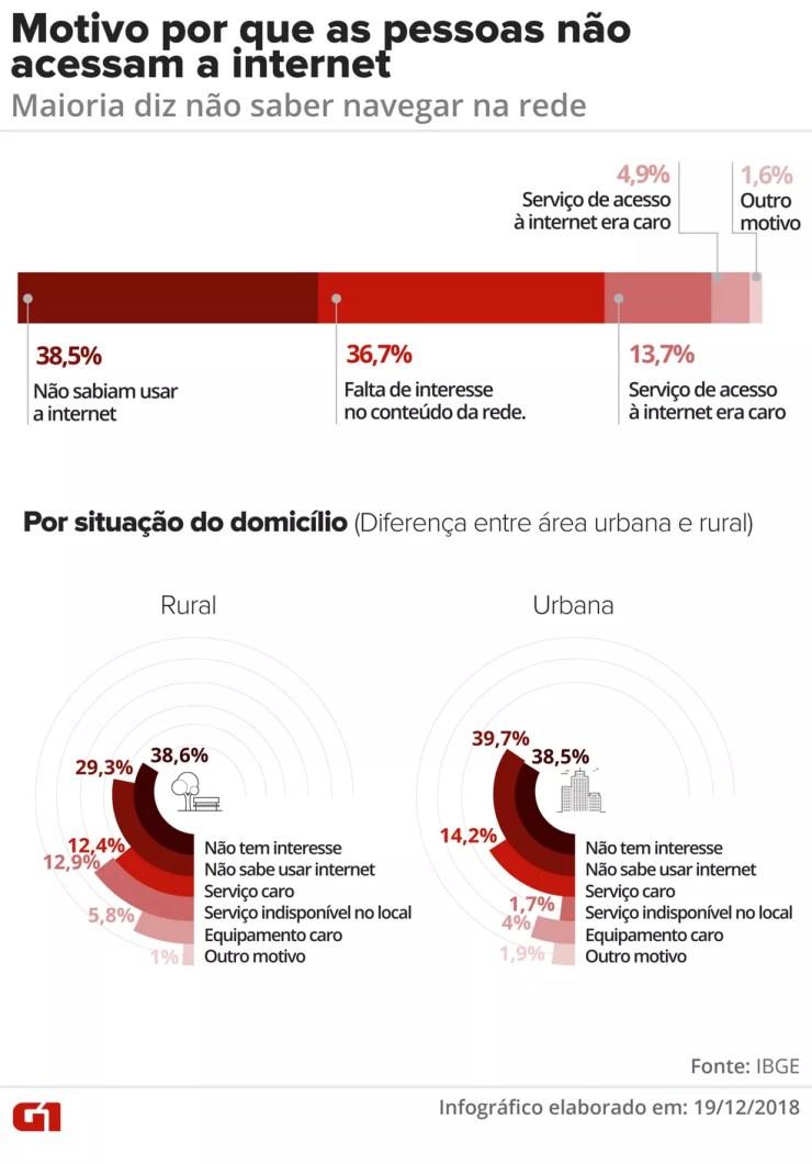 Pesquisa do IBGE mostra os principais motivos pelos quais os brasileiros não acessam a internet — Foto: Juliane Monteiro/G1