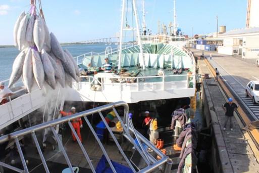 Governo do RN mantém isenção de ICMS sobre diesel para embarcações pesqueiras — Foto: Aldair Dantas