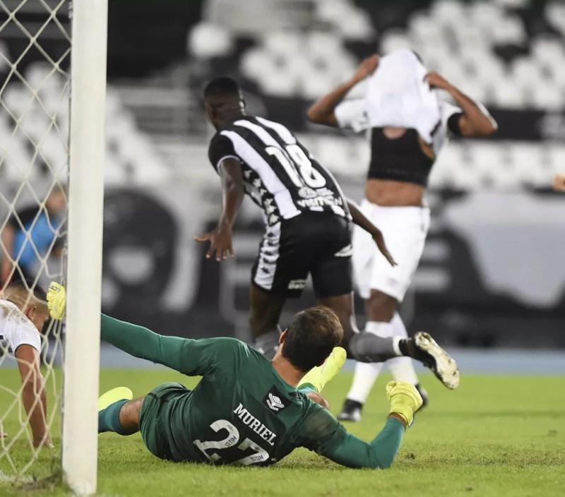 Babi faz gol em Botafogo x Fluminense — Foto: André Durão