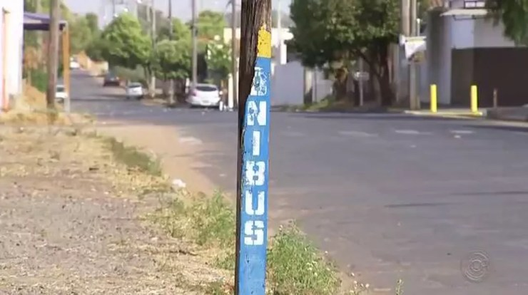 Empresa responsável pelo transporte público de Araçatuba (SP) não terá obrigação de melhorar pontos de ônibus (Foto: Reprodução/TV TEM)