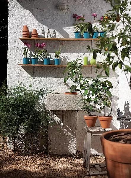 Jardim pequeno 10 dicas infalveis para cuidar  Casa e