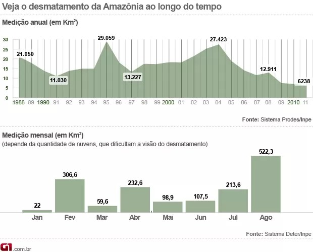 Desmatamento Amazônia agosto (Foto:  )