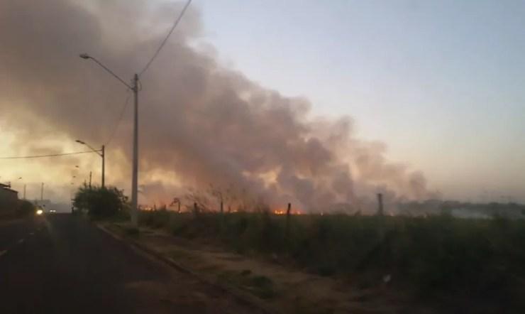 Incêndio atingiu área próxima ao bairro Luz da Esperança em Rio Preto  (Foto: Reprodução/TV Tem)