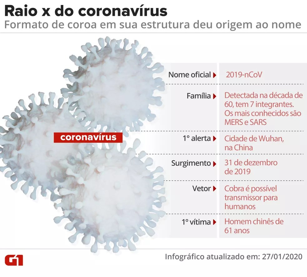 Raio X do novo coronavírus - VALE ESTE — Foto: Amanda Paes e Cido Gonçalves/Arte G1