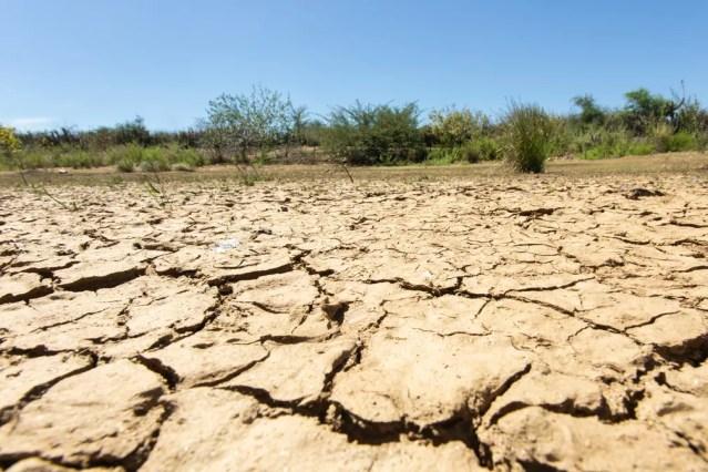 O solo argiloso, típico do semiárido brasileiro, racha quando seca. — Foto: Celso Tavares/G1