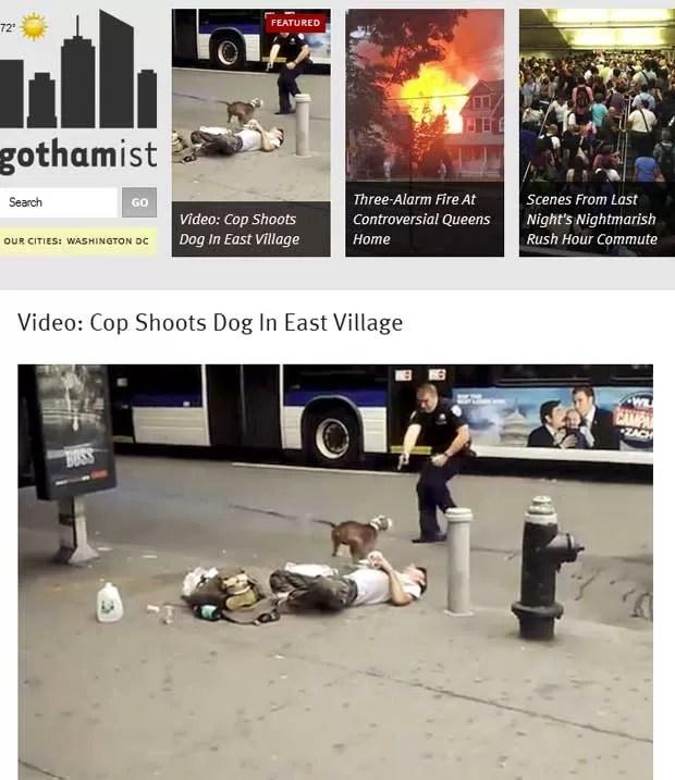 Cena de vídeo pouco antes de cão levar tiro do policial nos EUA (Foto: Reprodução)