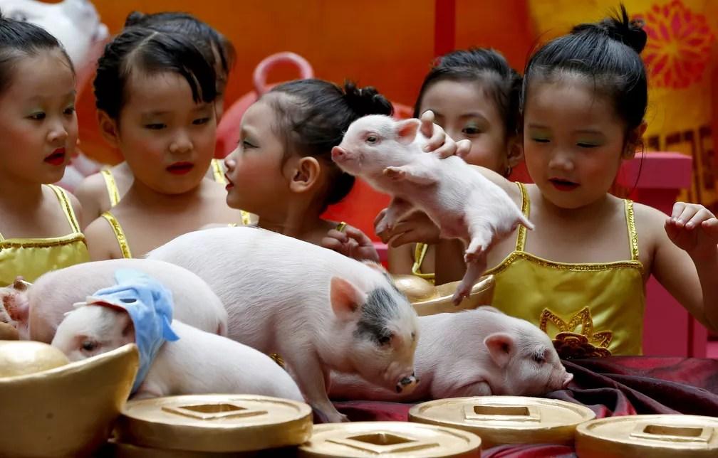Crianças brincam com mini porcos nesta terça-feira (5) em celebração do Ano Novo Chinês nas Filipinas — Foto: Bullit Marquez/AP Photo