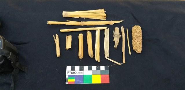 Restos de folhas, caule e espigas de milho foram encontradas nas primeiras escavações no poço de sacralização da tumba, vestígios da ocupação qurnawi (Foto: Divulgação)