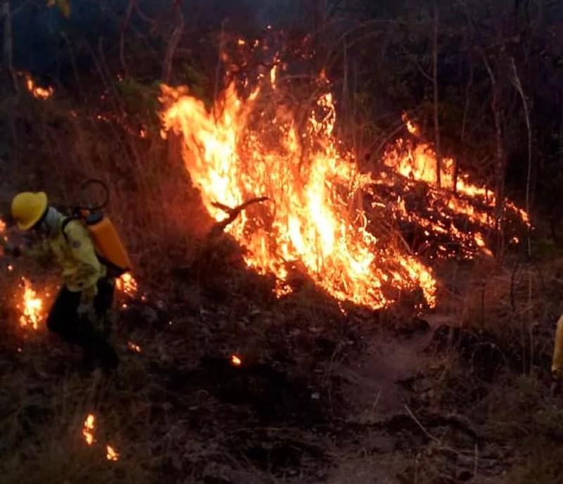 Incêndio atinge Serra da Bandeira, em Barreiras — Foto: Divulgação/Prevfogo