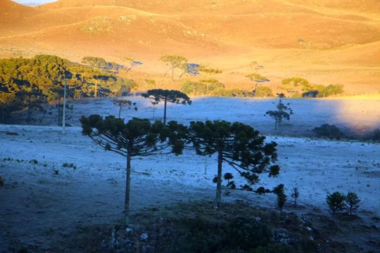 São Joaquim costuma ficar com paisagens brancas no inverno, como nesta sexta (21) (Foto: Mycchel Hudsonn Legnaghi/São Joaquim Online)