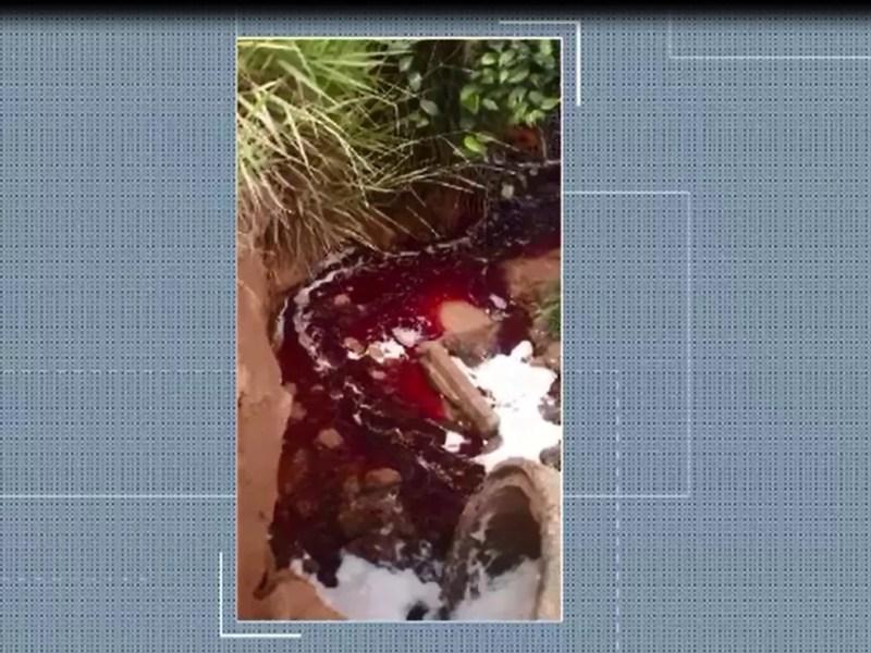 Vídeo mostra sangue de animal sendo despejado em igarapé próximo a frigorífico no Acre  — Foto: Reprodução