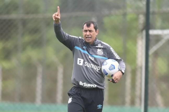 Fábio Carille durante treino do Santos — Foto: Ivan Storti/Santos FC