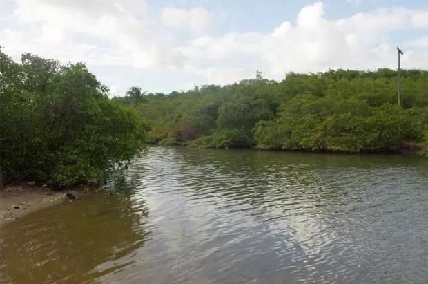 Rio Pratagy, em Maceió (AL) foi considerado regular pela análise feita pela ONG SOS Mata Atlântica (Foto: Divulgação/SOS Mata Atlântica)