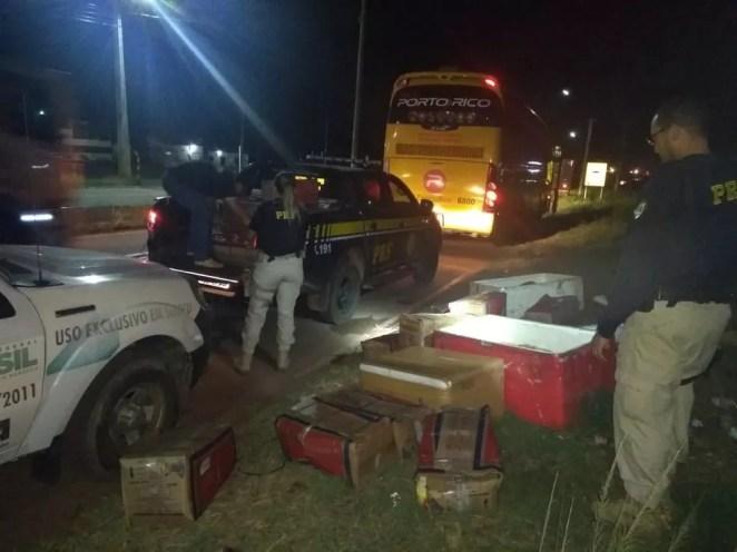 Ônibus de transporte de passageiros foi abordado durante uma operação conjunta com a Agência Estadual de Defesa Agropecuária do Maranhão (Aged)  — Foto: Divulgação/ Polícia Rodoviária Federal