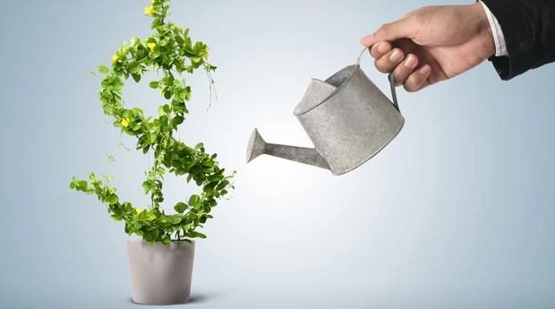 dinheiro_investimento (Foto: Shutterstock)
