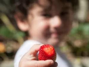 Primeira etapa do projeto abrange a criação de jardins comestíveis (Foto: Coletivo BioWit/Arquivo pessoal)