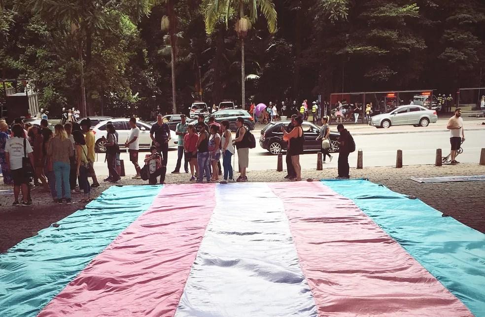 Bandeira trans em manifestação no vão do Masp, em São Paulo (Foto: Celso Tavares / G1)