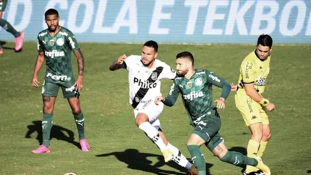 Ponte Preta x Palmeiras, 12ª rodada do Paulistão