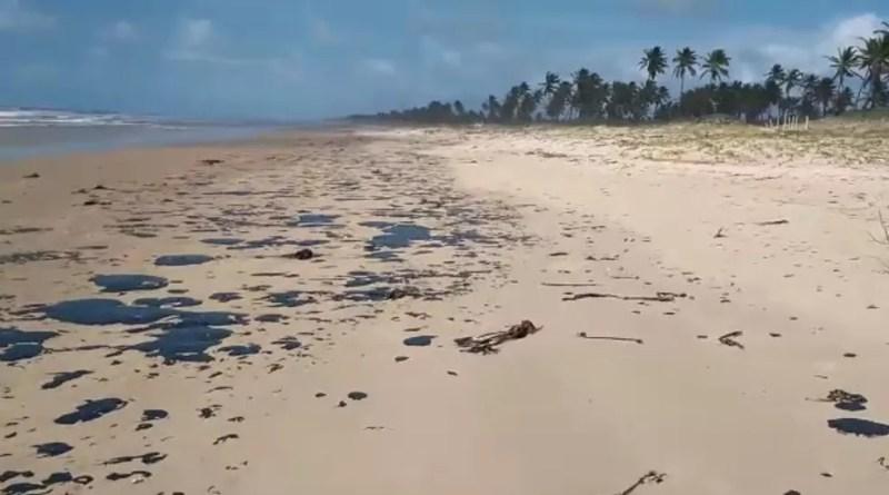 Manchas de óleo que atingem mar no Nordeste chegam na Bahia — Foto: João Arthur/Tamar