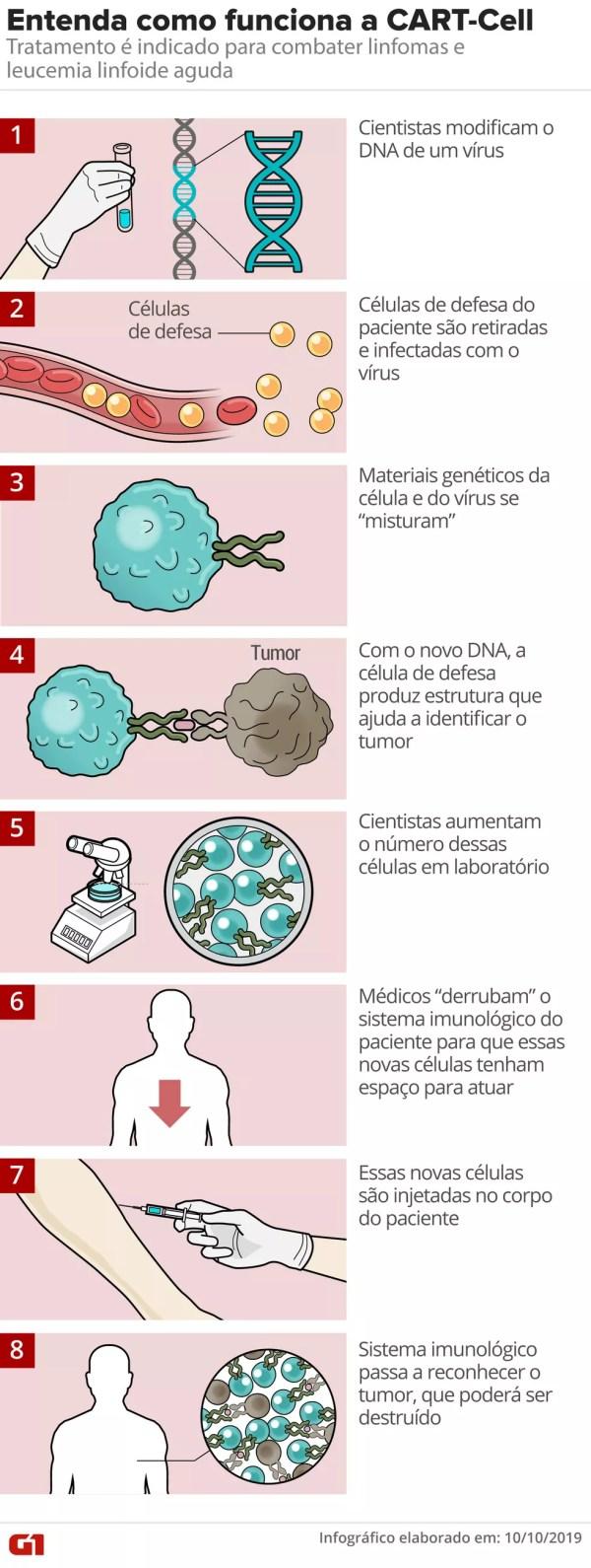 Entenda como funciona a terapia genética CART-Cell — Foto: Roberta Jaworski/Arte G1
