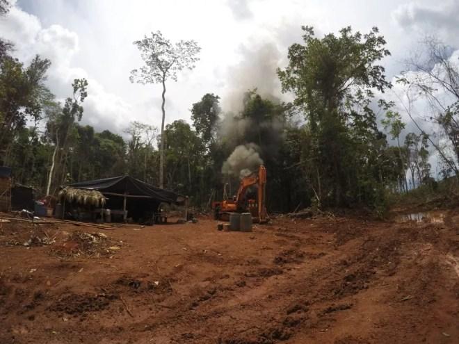 Exército divulga balanço final da Operação Verde Brasil na Amazônia Oriental — Foto: Polícia Federal/Divulgação