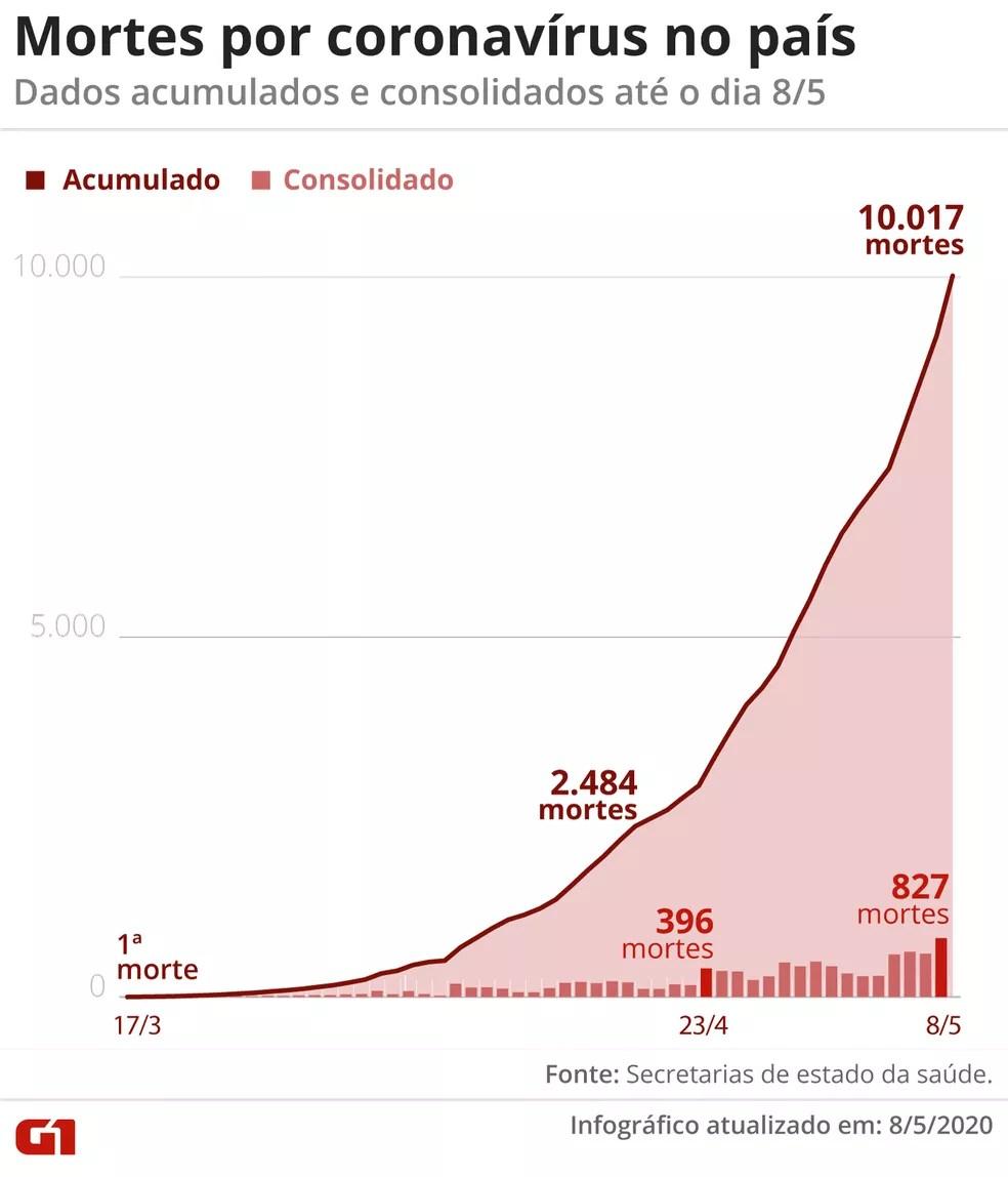 Mortes por coronavírus no país — Foto: Arte G1