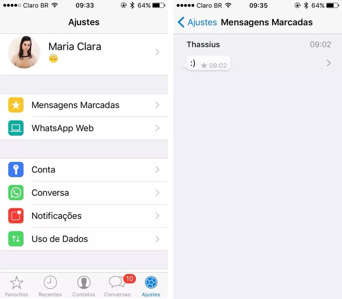 Atualização do WhatsApp para iPhone ganha novo menu de ajustes (Foto: Reprodução)