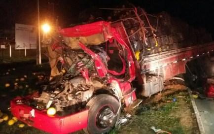 Motorista do caminhão morreu após a colisão, ocorrida na BR-232, em Vitória de Santo Antão (Foto: PRF/Divulgação)