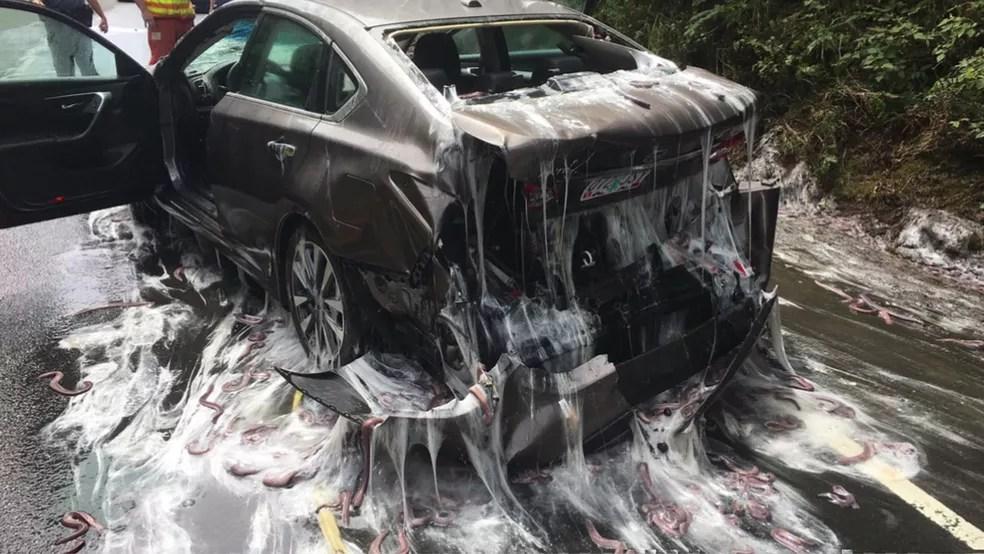 Caminhão cheio de enguias capota e deixa rastro de gosma nos EUA. (Foto: BBC)