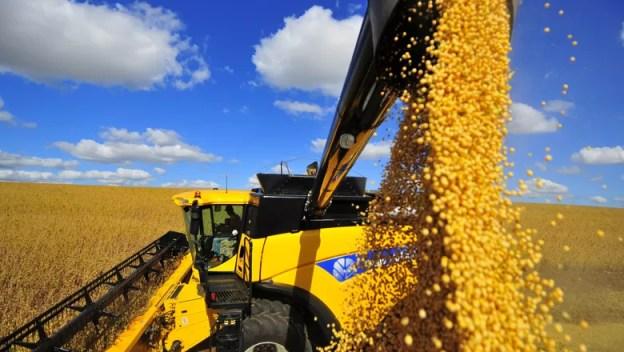 agricultura_soja_colheita (Foto: Tadeu Vilani/Ed. Globo)