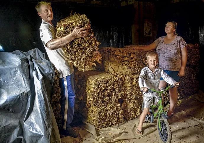 As vítimas: a família Diel no paiol onde acontece a secagem da folha de tabaco (Foto: Fernando Ageoletto)