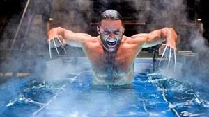 A história do passado violento e romântico de Wolverine, de seu complexo relacionamento com dentes de sabre, e do ameaçador programa arma-x e o impacto que terá sobre o resto de sua vida. Nesta jornada, Wolverine encontra muitos mutantes, incluindo aparições surpresas de varias lendas do universo dos X-Men.