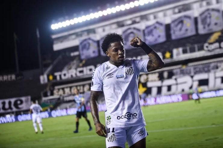 Marinho é o destaque do Santos em 2020 — Foto: Staff Images / CONMEBOL