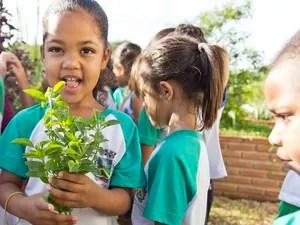 Escola de Santa Bárbara ganha 1º lugar em prêmio mundial (Foto: Divulgação/Prefeitura)