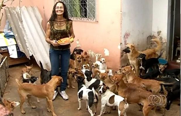 Rosadite cuida de animais abandonados em Anápolis, Goiás (Foto: Reprodução/ TV Anhanguera)