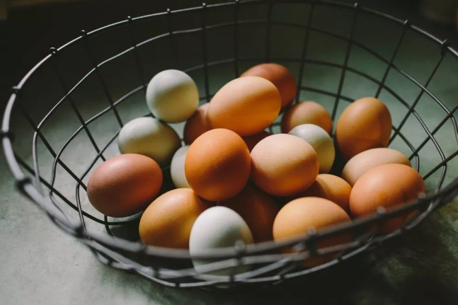 Ovos;ovos de galinha;produção de ovos — Foto: Natalie Rhea/Unsplash