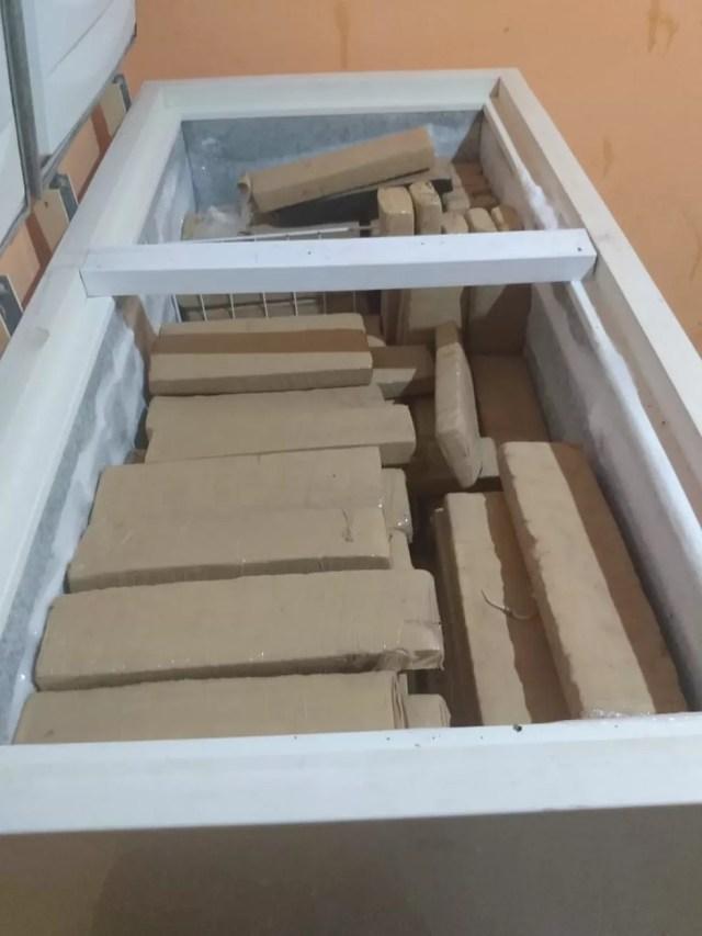 Droga foi encontrada em freezer, dentro de casa na Zona Sul de Porto Velho — Foto: Divulgação/PM