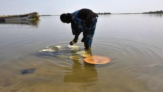 Lago Chade era a principal fonte de água do Cinturão do Sahel, uma área de extensão de 5 mil Km² (Foto: Getty Images)