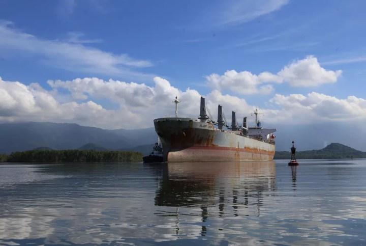 Navio graneleiro no Canal de Piaçaguera, no Porto de Santos, SP — Foto: José Claudio Pimentel/G1