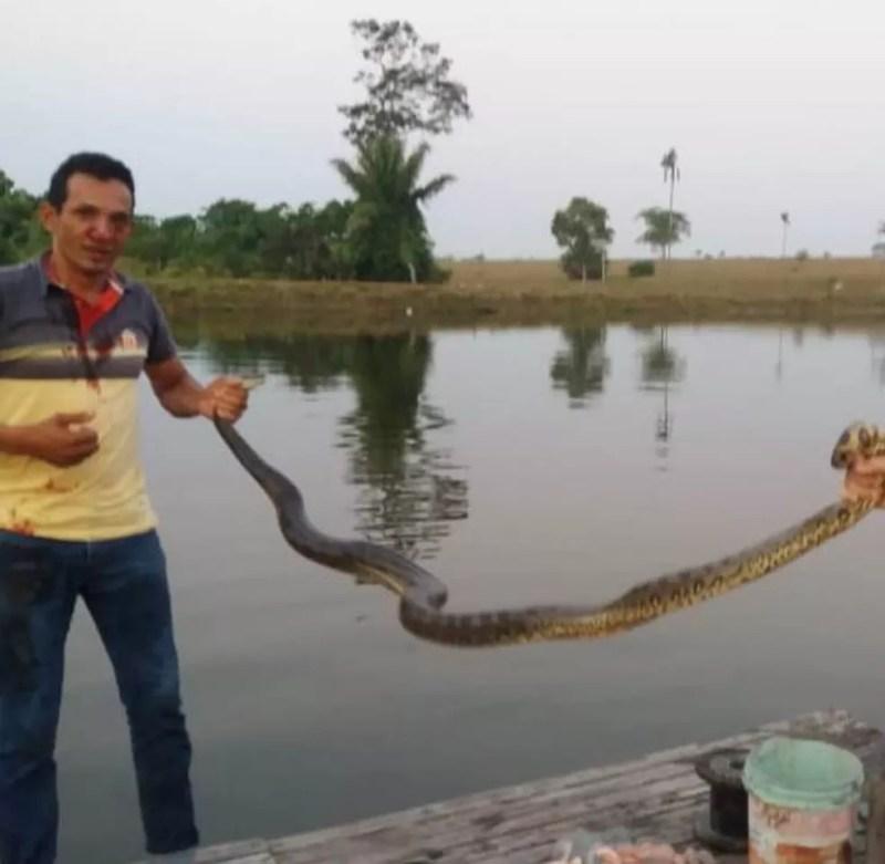 Sucuri foi levada para região de mata e deixada em córrego (Foto: Arquivo Pessoal)