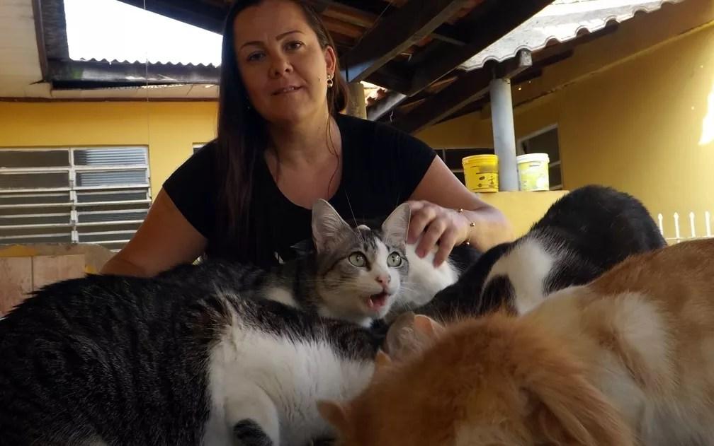 Katiusca Angélica Lopes Ribeiro cuida de 53 gatos e sete cachorros (Foto: Caio Gomes Silveira/ G1)